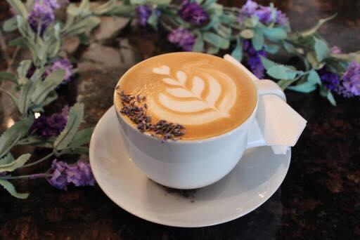 casa-cafe