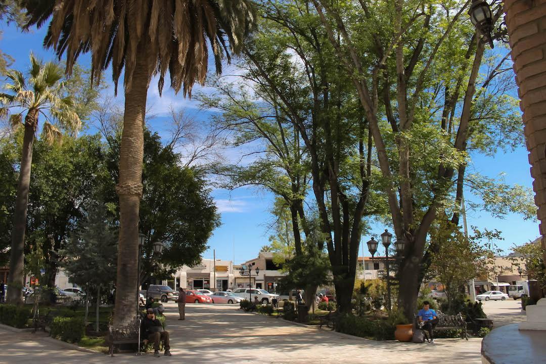 El Parque Miguel Hidalgo, Tecate
